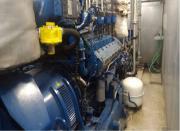 600 kW Bio