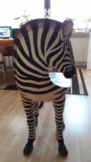 Afrika Zebra-Stuhl Deko weiss Unikat