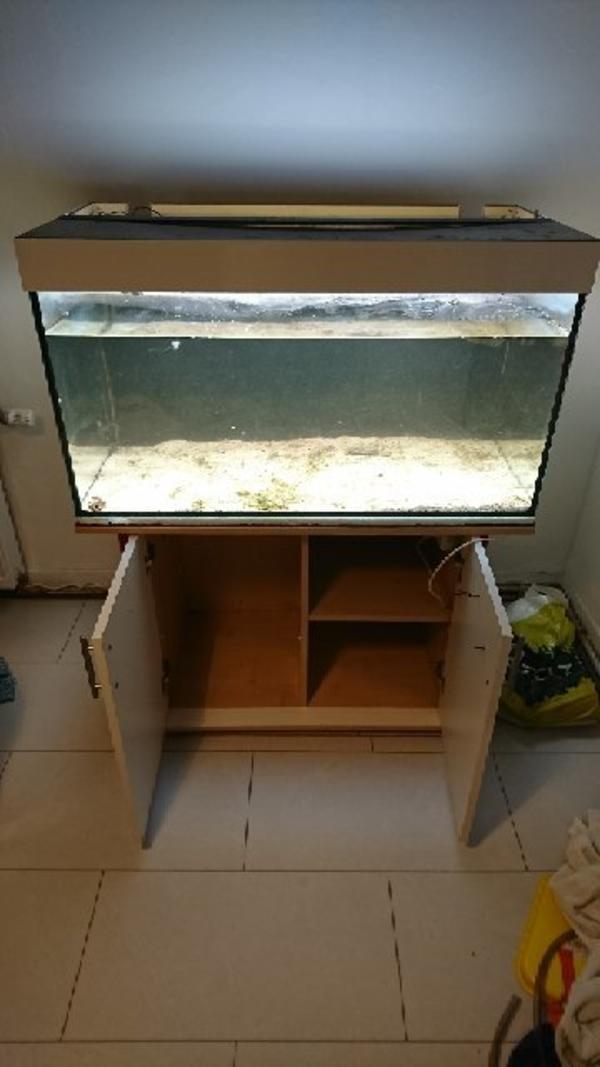 Aquarium 250l kleinanzeigen tiermarkt deinetierwelt for Aquarium mit unterschrank