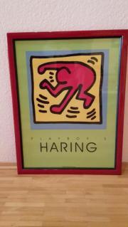 Bild Haring Playboy gerahmt