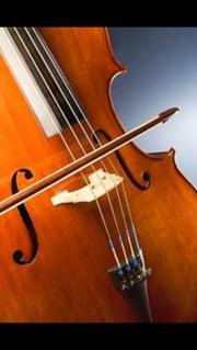 Cellounterricht in Stuttgart-