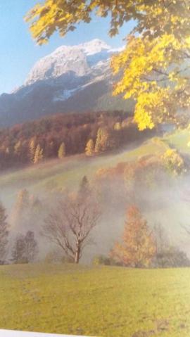 Die Alpen Bildband: Kleinanzeigen aus Erfurt Andreasvorstadt - Rubrik Fach- und Sachliteratur