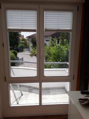 Fensterelement