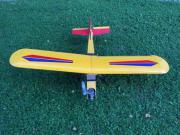 Flugzeug ferngesteuert mit Benzinmotor MDS