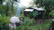 Garten / Imkergrundstück in