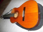 Gitarre Autentica admira