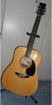 Gitarre, Original RIO