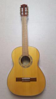 Gitarre Pro Arte