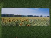 Glasbild 80x30cm Bild