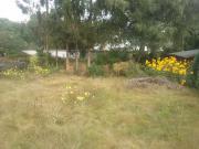 Grundstück in Schermbeck