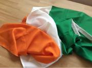 Irlandflagge