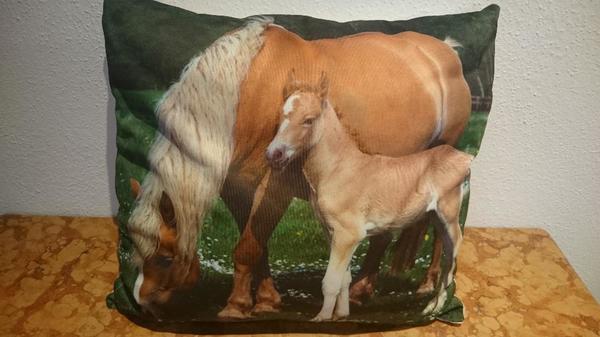 kissen mit pferdemotiv 38x40 cm in schechen dekoartikel kaufen und verkaufen ber private. Black Bedroom Furniture Sets. Home Design Ideas