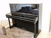 Klavier (BJ 2013),