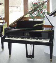 Klavier Flügel Ibach