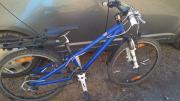 Mountainbike Scott 24
