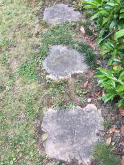 Sandstein Polygonalplatten zu