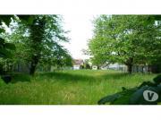 Schönes grünes Baugrundstück