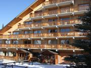 Ski-Ferienwohung in