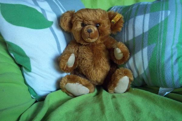 """Steiff, Teddybär, Original, Bär, Teddy - Völklingen - Wunderschöner Steiff classic Teddybär mit """"Quietschi"""". Einmal auf den Bauch drücken und das Bärchen quiekt :)Der Süße ist 32 cm groß und wurde 1998 in Deutschland hergestellt.Sein Fell ist aus Mohair und rot-braunDie Augen sind sogena - Völklingen"""
