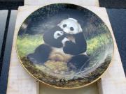 The Panda, Last