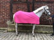 Tolles Kinderpony