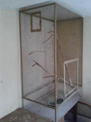 Vogelkäfig - 150x100x60cm (H-