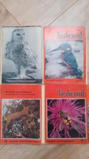 Zeitschrift TierfreundZeitschrift Tierfreund
